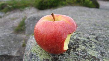 apple temptation sexist