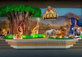 Roar Vacation Bible School Plan
