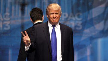 Donald Trump Words