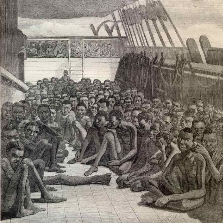 transatlantic slave ship drawing